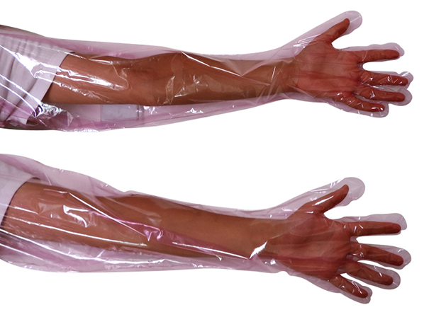 Artificial insemination long glove